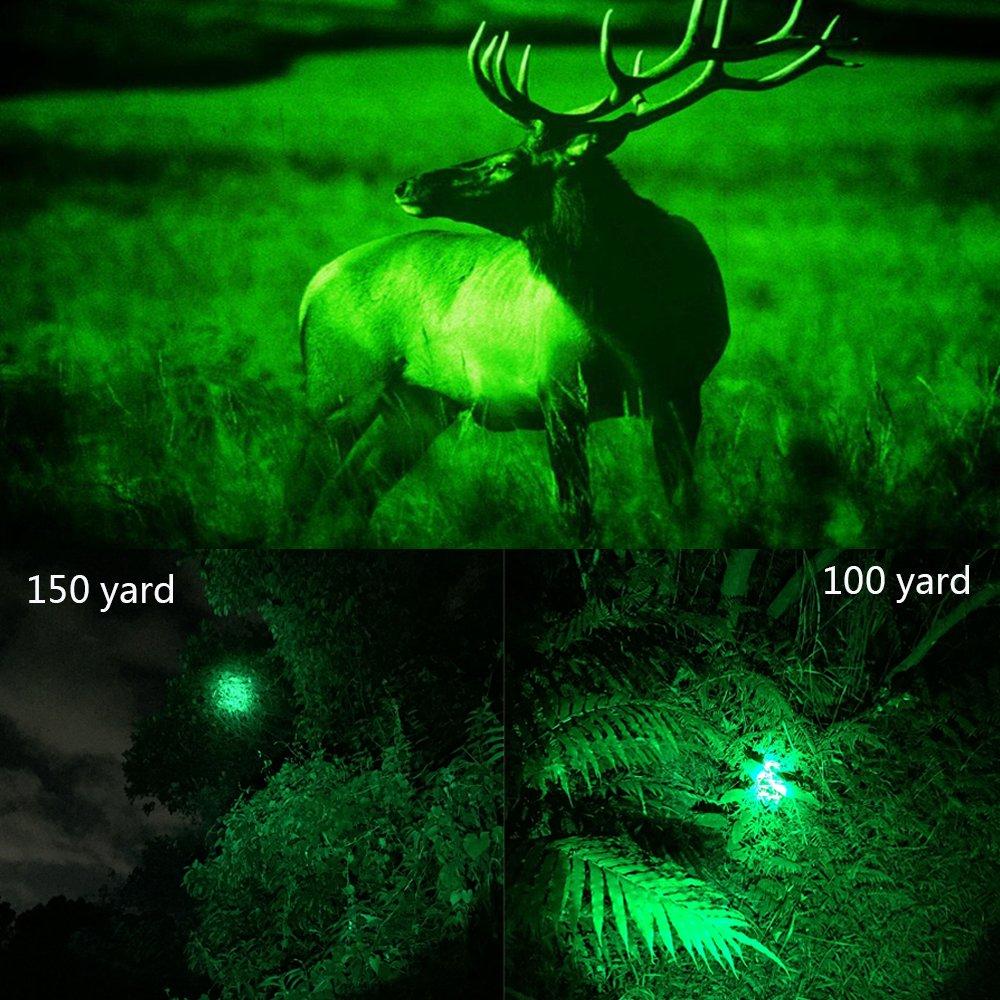 coyote hunting spotlight
